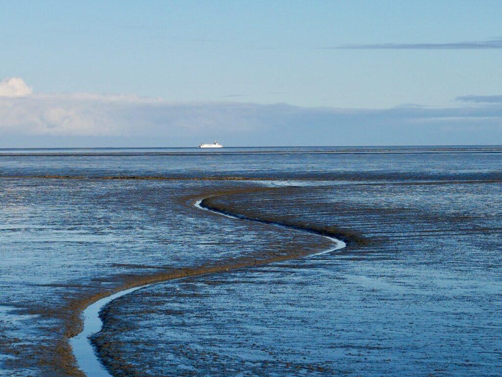 Unesco Waddenzee Werelderfgoed